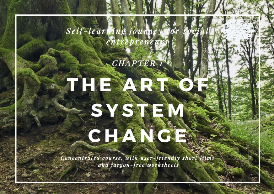 Changemaking - chapter 1