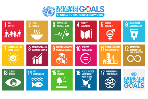 Sustainable Development Goals - Hero