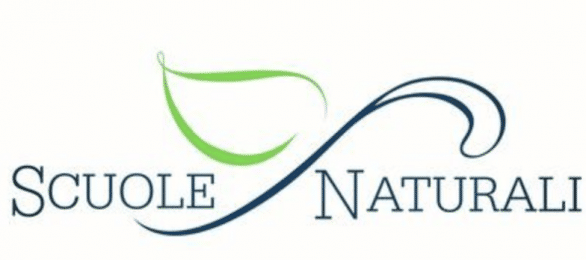 Logo for Scuole Naturali. Word Scuole to left, step starts at end of word and goes diagonally to the right, with one green leaf; the word Naturali on the other side of the stem