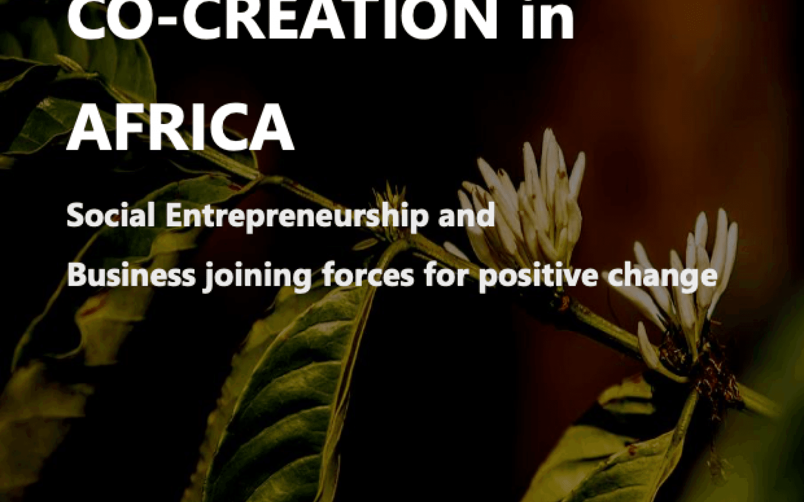 Social and Business Co-Creation in Africa