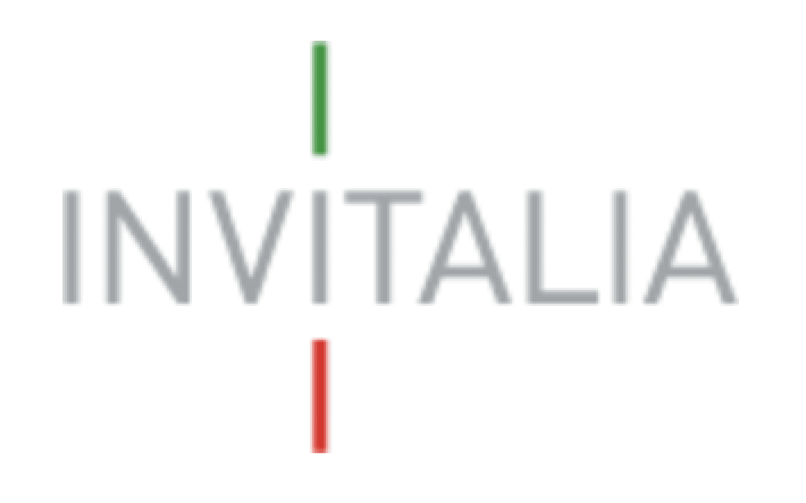 Grey words Invitalia; above the second 'i' in Invitalia, a green I, and below the second 'i' a red I, so that all the I's from top to bottom look like the Italian flag