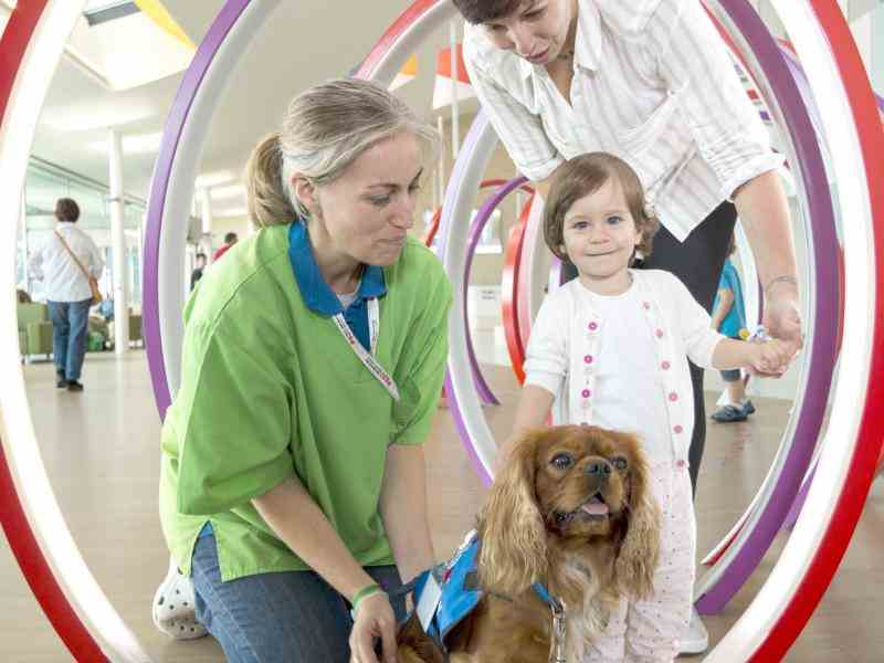 Animal Therapy at the Hospital Sant Joan de Deu
