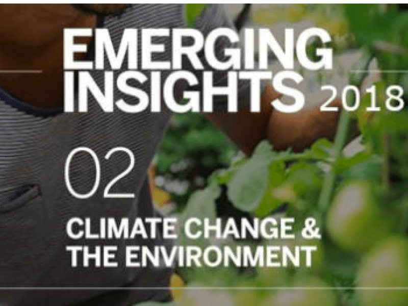 Emerging Insights 2018