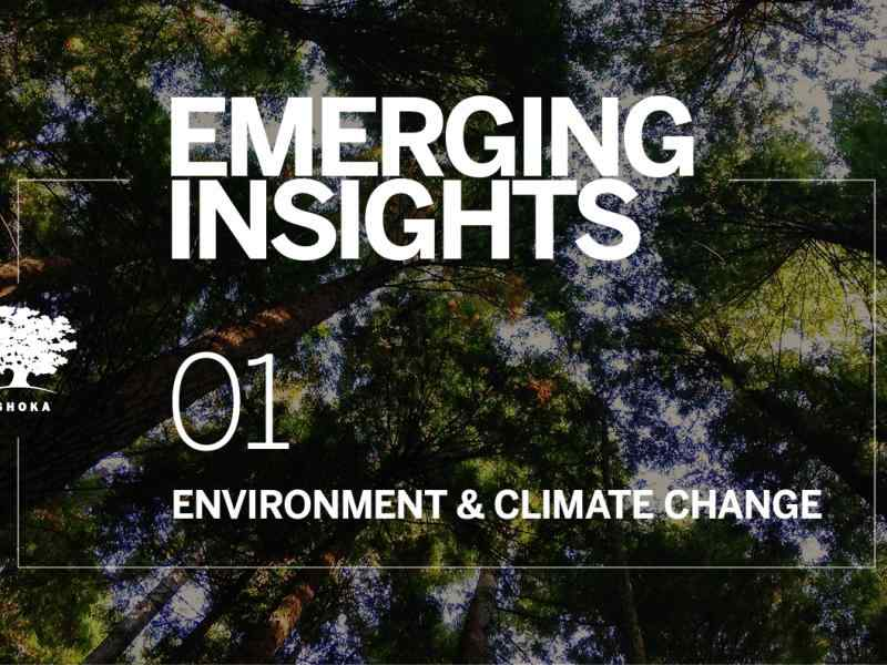 Environment & Climate Change - Emerging Insights 2019