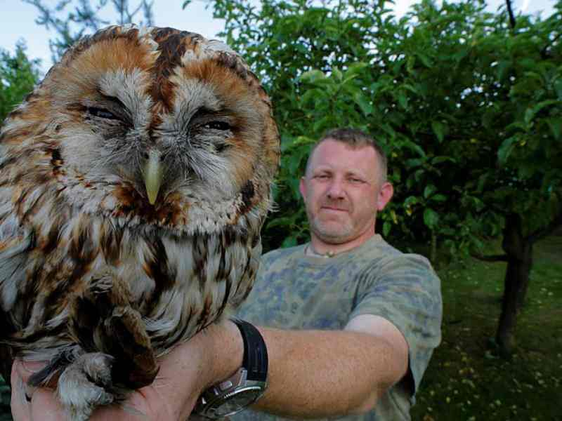 man holding an owl in his hand