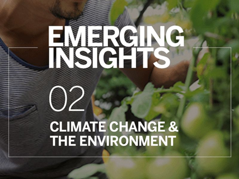 "Na tle zielonego krzaku napis ""Emerging insights. 02 - Climate change and the environment""."