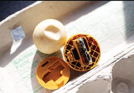 Turtle Egg Monitoring Device