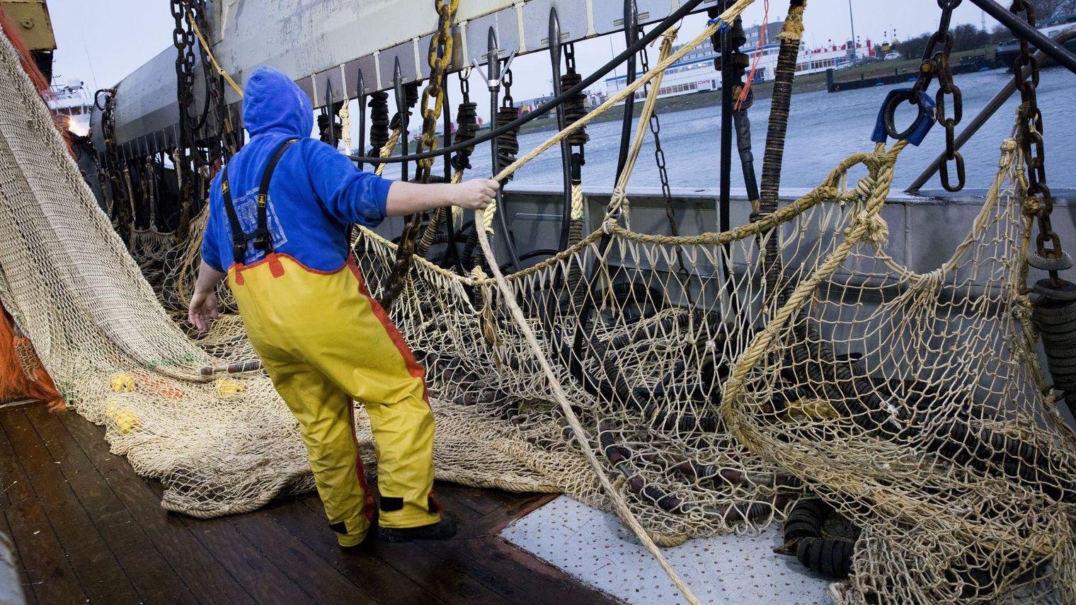 """Interdiction de la pêche électrique - """"Une grande victoire"""" pour Claire Nouvian"""